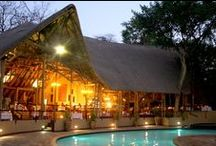 Chobe Safari Lodge / Chobe Safari Lodge is situated in Kasane on the banks of the Chobe River and shares a border with Chobe National Park. Right on our doorstep is the meeting of four African countries: Botswana, Namibia, Zimbabwe and Zambia. Chobe Safari Lodge therefore offers an excellent getaway location to Chobe, Victoria Falls or Caprivi.