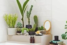 Decorating with plants / Plant walls, green walls, vertical green walls, vertical gardens, decorating with plants, living with plants, greenhouse living, green interior, etc.