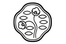 Logo / Symbol / by Light Lee