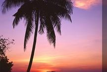 Beaches (take me there) /  Welcome to my board,come in and take a look..I get excited when i am pinning there is always new things to see and pin,New pins added all the time ,so stop back in to see them.Thanks for all the great pins and pinning with me.Have fun pinning.