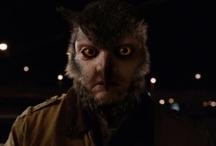 Were-Owl