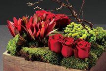Flowers / by Venessa Steyn