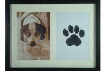 DIY Pet Projects / Fun stuff for pet owners
