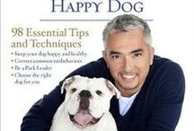 BEST ADVICE FOR DOG OWNERS / What every dog owner needs to know to raise a happy, emotionally stable dog.  CESAR MILLAN