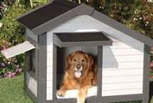 KÖPEK KULUBESİ - DOG HOUSE