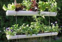 Green garden inspiration
