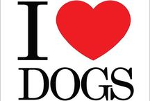 All about loving dogs / by Paula Prasetya