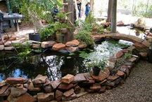 Aquaponics / growing plants using as few resources as possible while utilising permaculture principles