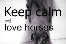 Ceep calm and love horses / When people say it's just a horse... they just don't understand ;-)