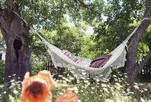 a summer's garden  / a beautiful place to relax and enjoy the garden