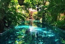 Secret Gardens / by Nicole Loos