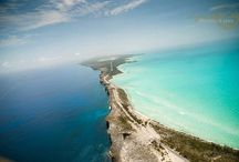 Bahamas, baby! / by Nicole Loos