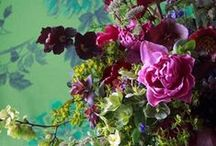Juliet Glaves floristry at Designers Guild Kings road / Flowers by the renowned florist Juliet Glaves will now be available in our Kings Road store daily. Pop in to shop the stunning hand held bouquets, posies and simply cut stems.