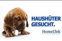 HomeLink Basics / Infographics, Facts & Figures