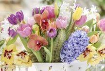 Arranjos Florais / Arranjos com as flores e plantas que mais amamos para decorar e colorir a mesa ou outros cantinhos da casa!