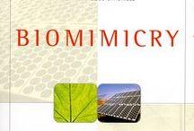 Biomimicry   Innovatie