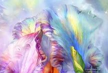 Healing Art / A collection of art focusing on healing beauty and the Chakras, by Carol Cavvalaris.