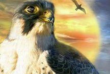 Birds Of Prey Art