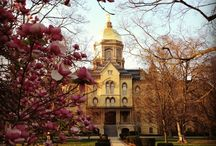 notre dame, our mother / Onward to victory  / by chantal autumn