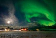 Nordlicht in Norwegen / Von September bis April wird Sie Nordnorwegens Himmel an neun von zehn wolkenlosen Nächten in seinen Bann ziehen.  Und natürlich gibt es in Nordnorwegen auch tagsüber viel zu erleben. Eine Tour mit dem Husky-Schlitten vielleicht?  Begegnungen mit Walen oder der samischen Kultur?