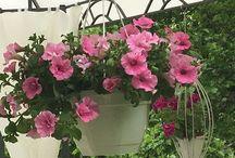Villa Katajisto Garden / Romantic garden
