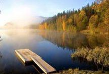 Herbst in Norwegen / Im Herbst leuchten Norwegens Wälder und Fjells in den buntesten Farben - Indian Summer!