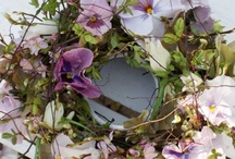 Wreaths & Door Decor / by Carol Newton