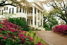 Antebellum and Southern Homes / by Carol Newton