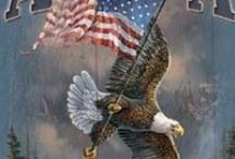 My Sweet America! / by Carol Newton
