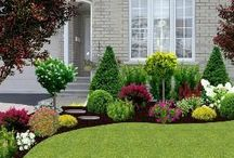 Landscaping / Ideas to make the landscaping at our house beautiful