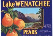 Vintage Labels / Vintage and new fruit labels!