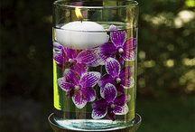Ideas florales / by Claire