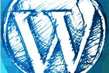 CMS Wordpress / Différent visuel sur l'univers du CMS Wordpress.