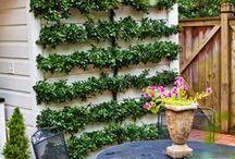 Gardenning...