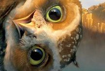 Animals,so cute / So cute! Love love love animals. Actually prefer them over most People I know. Lol / by Brenda Williams