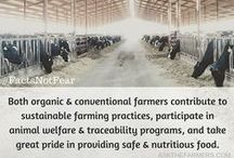 Agriculture / All about agriculture. All pins are from the farmers/ranchers of Ask the Farmers. Our blog posts from our individual blogs as well as our graphics that we created.