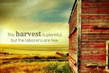 Agriculture Quotes & Sayings / Agriculture quotes, sayings, etc.