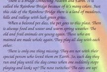 """Family : Pets : The Rainbow Bridge and Other Pet-Themed Memorial Messages / This is just a small collection of Pet-Themed Memorials that I've collected over the years and """"along the way"""". Feel free to Pin, """"Steal"""", and/or Share any that you especially like, but I hope you enjoy them all."""