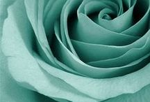 Seafoam ✿⊱╮Fashion / Thank you for following me! Have originality, so try to pin with respect!
