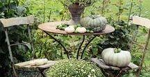 Minden, ami kert...
