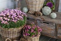 Terasz és kerti pihenő
