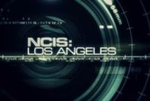 NCIS: Los Angeles (TV Series) / Federal Agents