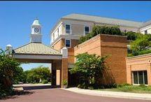 Souderton Mennonite Homes - Community Center and Grounds / Souderton Mennonite Homes is a Continuing Care Retirement Community in Souderton, PA.