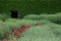 Our Work / Landschaftsarchitektur, Garden design, Landscape architecture, Paisajismo, diseño de jardines.