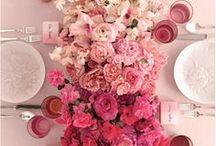Piante e fiori!