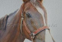Equestrian Commissions  / Horse portrait commissions and paintings from various artists.