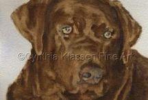 Chocolate Labs / Chocolate Labrador Retrievers