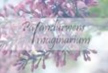 Palandurwens Imaginarium / Here is a little best of Palandurwens Imaginarium, my personal blog. The topic is photography, DIY, books, lifestyle and food. :)
