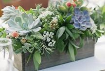 Centerpiece Ideas / Beautiful centerpiece ideas for a wedding, party, and the home.