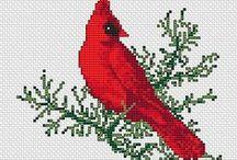 Madarak-Birds / xszemes
